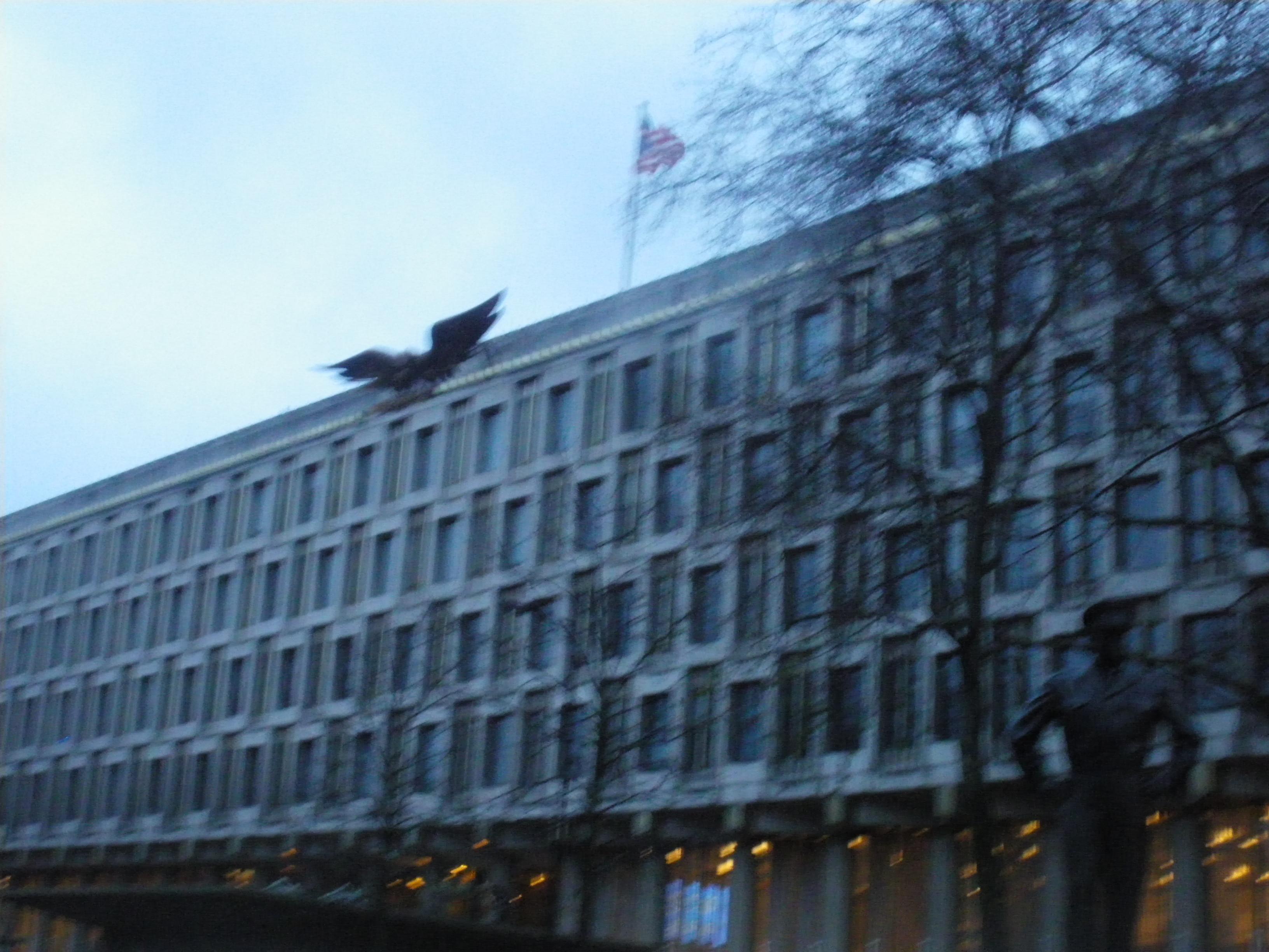 【7】コンサート会場のようなアメリカ大使館の建物