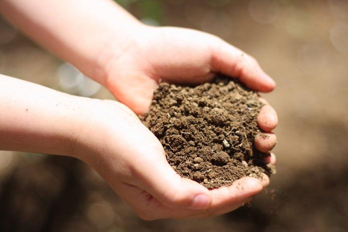 家庭菜園で使う土