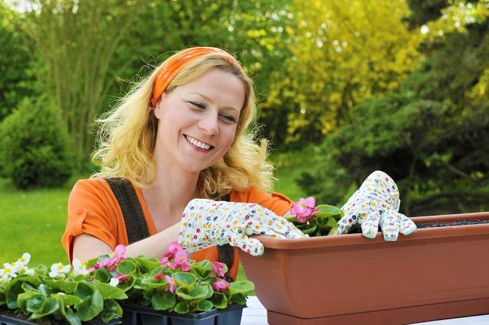 花の植え替えをする女性