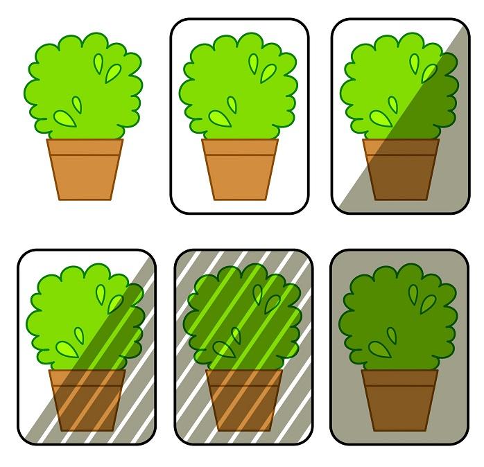 観葉植物の日あたり環境のイラスト