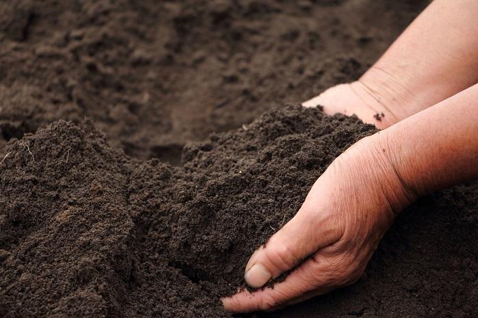 ふかふかした良い土