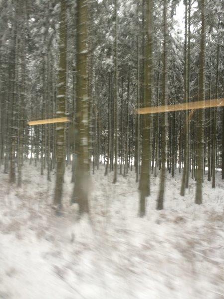 【1】アルデンヌの森